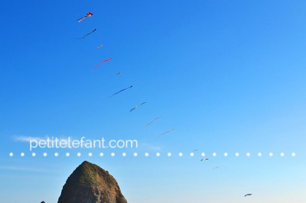 oregon coast kites