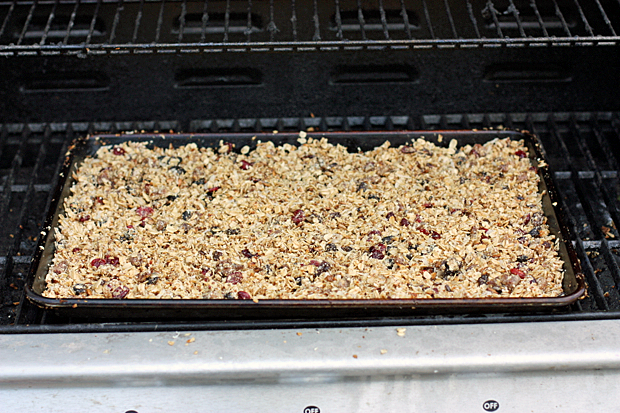 roasted-granola
