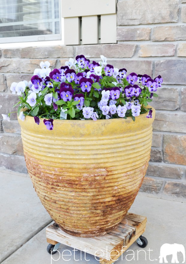 flower pot patina