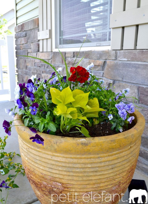 Gorgeous Flower Pots