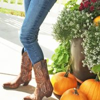 Fall Favorites Cowboy Boots